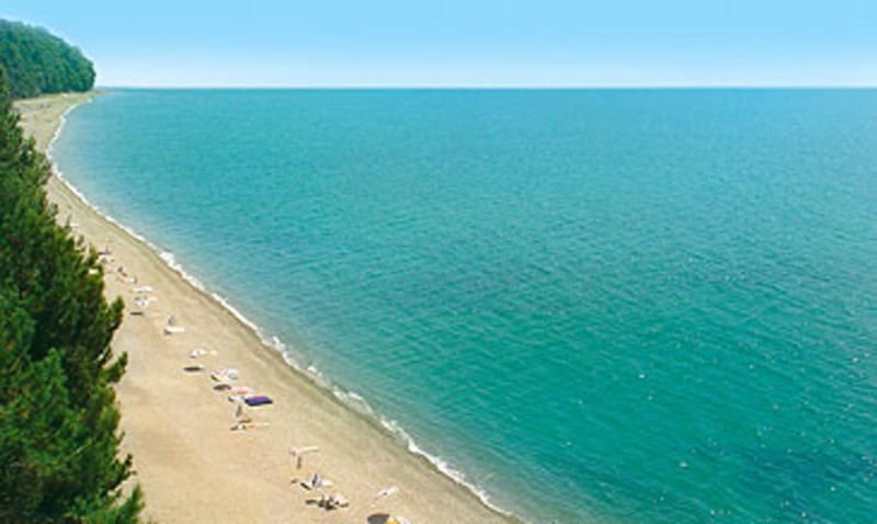 Пансионат литфонд пляж 31