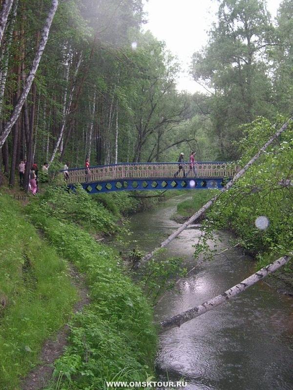 Омская область артын фото